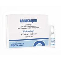 Амикацин р-р для в/вен. и в/мыш. введ. 250мг/мл ампулы 2 мл 10 шт.