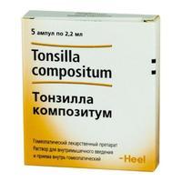 Тонзилла композитум ампулы, 2,2 мл, 5 шт.