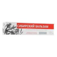Vilsen Vilsendent зубная паста Сибирский бальзам пихта сибирская и бузина 100 г